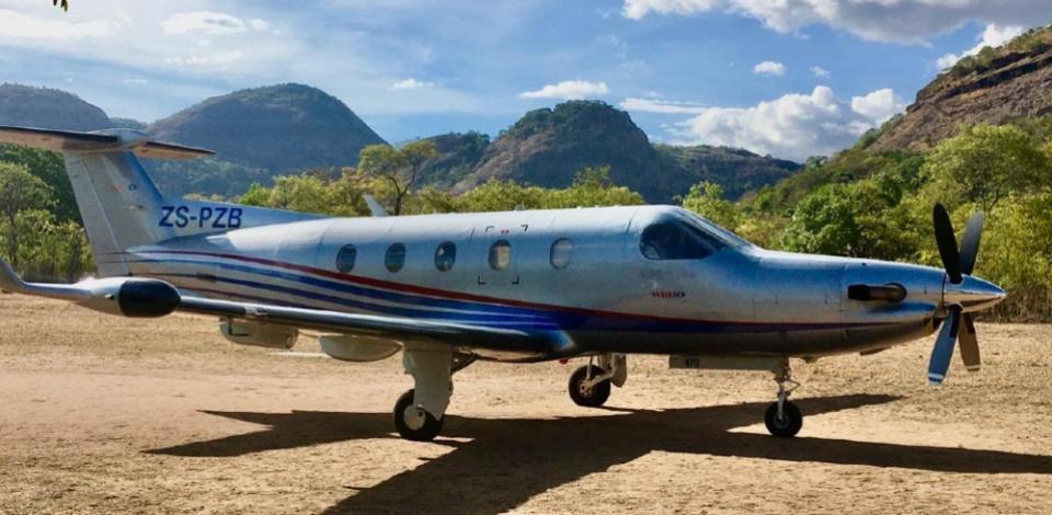 Crocodilo transportado por avião