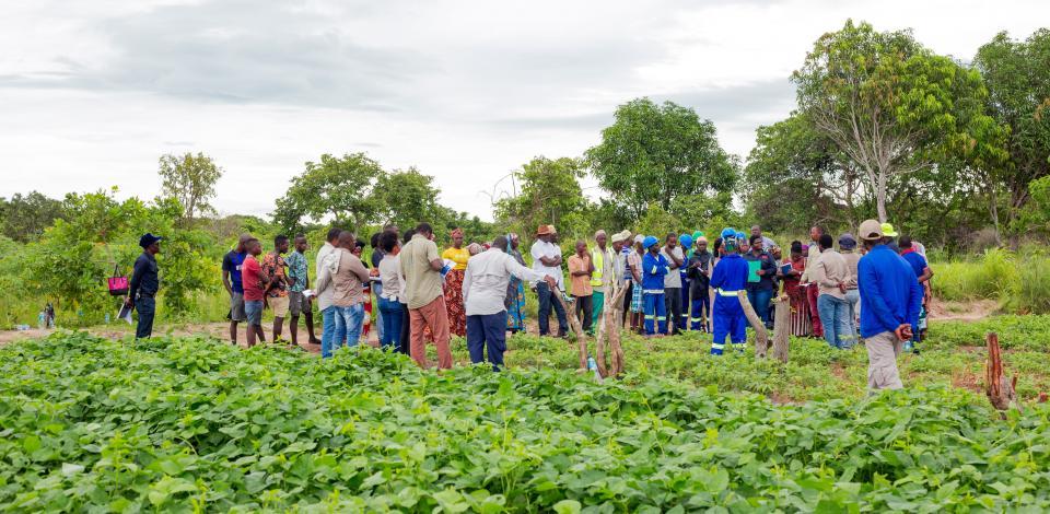 Dias de Campo para Agricultores